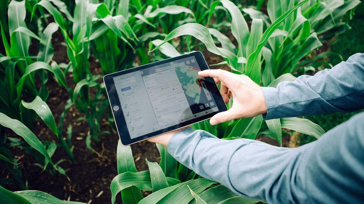 """Bahía Blanca: organizan la """"Agrotón 2021"""" para promocionar la tecnología en el agro"""
