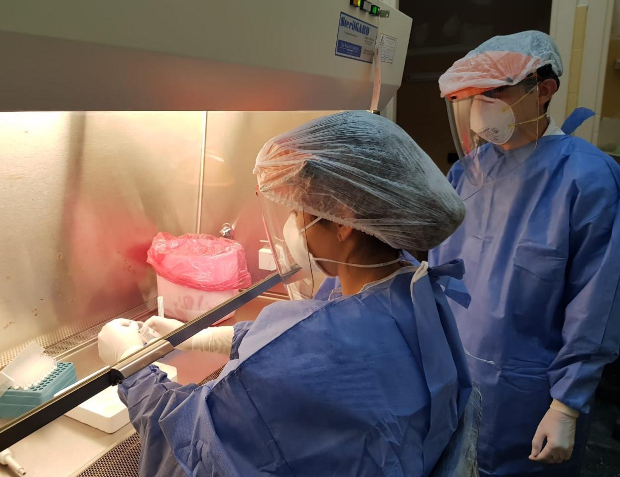 Coronavirus: 1.303 nuevos contagios y 38 muertos en las últimas 24 horas
